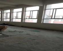 (出租) 枚乘路厂房出租 2400平方 两层可分开出租