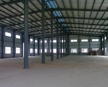 (出租)薛行化工园纬十二路工业厂房出租或出售