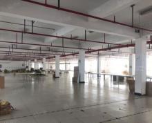 (出租)溧水区 柘塘2180平一楼厂房出租 丙二消防带喷淋