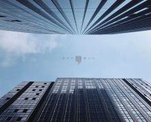 市区新楼盘 新街口核心区域(平安金融中心)品质高 立企业形象