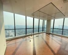 (出租)雨花客厅 vivo大厦 精装视野好 丰盛商汇 南京南站 世茂