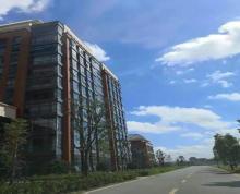 (出租)青剑湖启迪科技城双面采光好停车全新装修带隔断随时看房