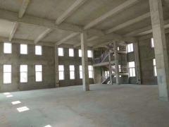 出售 南京 江北 600到10000平标准 厂房