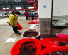 (转让)城北农贸市场,菜场水产门面房