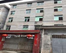 (出租)自建房独门独院4层半约800平方米