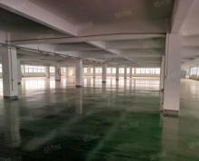 (出租)桃花工业园独栋框架厂房12000平,3吨货梯环氧地坪,分租