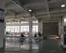 (出租)江宁区 将军大道旁4000平标准厂房出租 层高8米 环氧地坪