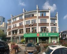 茶亭公园边地铁口,独栋可做酒店,送多个私家车位私家