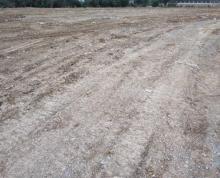 (出租) 湖熟303县道附近,出租或转让土地30亩。具体面谈