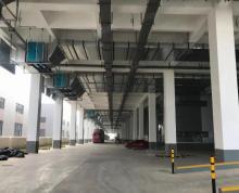 (出租)江宁滨江25000平标准仓库可分租,消防产证齐全,配办公