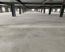 (出租) 滨江 江宁镇司家新洲路168号 厂房 3600平米可分割
