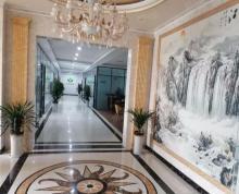 (出租)开放大道,中远商务楼,精装修370平15万一年,随时看房!
