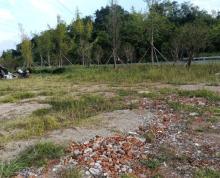 (出租) 白鹤冶路材60省道旁 土地 2000平米