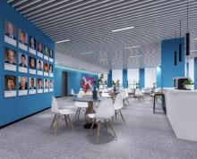 (出租)全套家具科技企业云 高新企业房租补贴软件谷云密城 雨花客厅