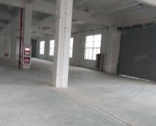 (出租)城南一楼标准厂房550平方出租电量大