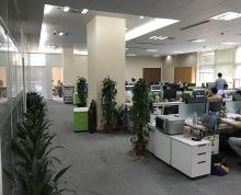 新城科技园 一楼招租 层高4.5米 两面采光 低价抛租 开间+多个职能房间 送超长免租期哦