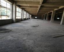 (出租) 秣陵正规标准厂房出租。