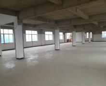 (出租) 标准一楼厂房,高4.1米