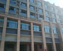 城东妇幼保健院旁 临街旺铺 挑高6米 靠主干道
