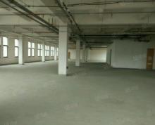 (出租)湖东中心 独栋办公 2.5产业园 精装1000平超优价租