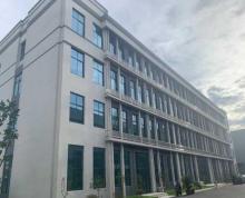(出租)出租海陵城南全新办公楼,可整租可拆租