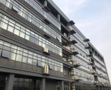 临港临策同心园诚信大厦精装修办公房大小面积都有办公环境非常棒