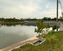 (出租)出租湖熟成熟农庄占地50亩整体出租鱼塘茶园应有尽有