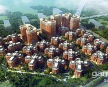 紧邻地铁口 花园独栋 买四层得六层 送电梯 科技型企业入驻