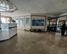 (出租)地铁高架旁 世茂广场1445平商铺出租 户型佳