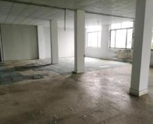 个人桥北 宁六路32号仓库出租 仓库 300平米