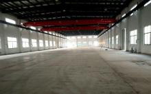 (出租)浦囗开发区 厂房 3000平米单层厂房出租,高12米