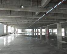 (出租)经开丙二类框架厂房单层5000平,三部货梯,一部客梯