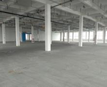 (出租)经开独栋丙二类框架厂房仓库21000平,1吨承重,核心地段