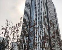 办公楼100-1500平非中介 超长免租