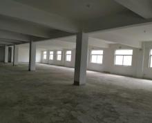 (出租)厂房挑高9米,全框架结构,地面钢化处理
