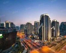 (出租)南京南站 地铁高铁联通 高逼格商场 业态不限 只要品牌