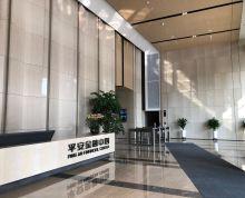 汉中公馆平安金融中心 汉中门地铁口 新盘面积可分割 车位充足
