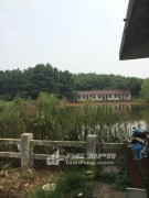 南京市溧水区东屏镇70亩家庭农场