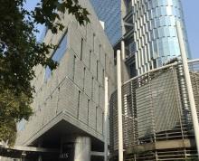 南京地标 紫峰大厦 地铁口 俯瞰玄武景观 高档精装