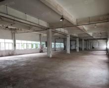 (出租)牛首山工业园标准厂房 手续齐全场地大适合物流仓储