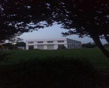 (出租) 上冈产业园1800平米标准厂房出租