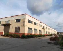(出租)出租金湖县城区 独栋厂房7000平 近市区挑高8.5米诚租
