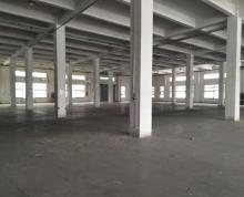 (出租)无行业限制胜浦1300平一楼厂房 可加工可仓储 产证齐全