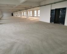 独栋工业厂房 单层1500平 办公生产一体化