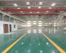 (出租)横泾标准一楼厂房1500平,位置好交通便利行业不限