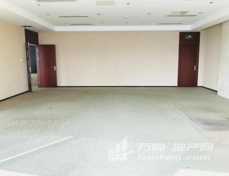 签约送Iphone12MAX 河西奥体 总部云集双