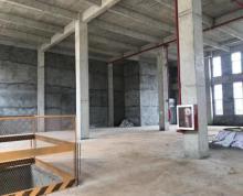 (出售)出售上海周边德式高标全新花园厂房50年独立产权