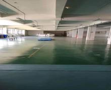 (出租)胡埭,二楼精装修1200平,2吨货梯