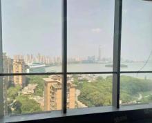 (出租)拎包办公!苏州中心全湖景118平到360平558平100