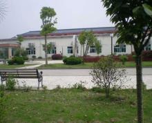 (出租)高淳双高路花园式厂房适合各类生产和仓储